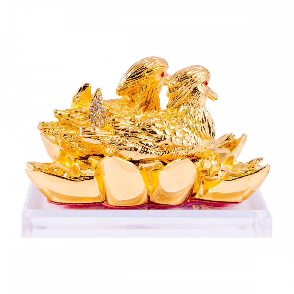 Утки мандаринки золотые